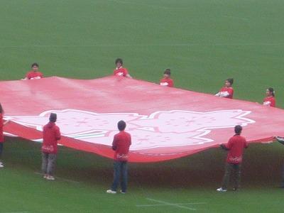 日本代表の旗、赤く染まれの桜